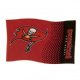 Tampa Bay Buccaneers Large NFL Logo Fade Flag (bst)